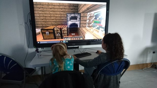 Learning with Minecraft